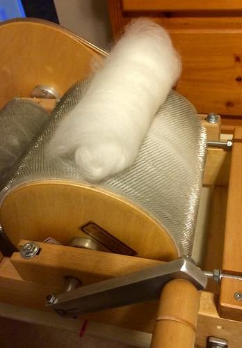 Rolling the carded fibre off into a tidy batt.