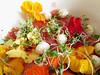 (100% raw) vegan nasturtium salad