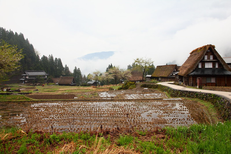 IMG_7742_2013 Nagano Trip