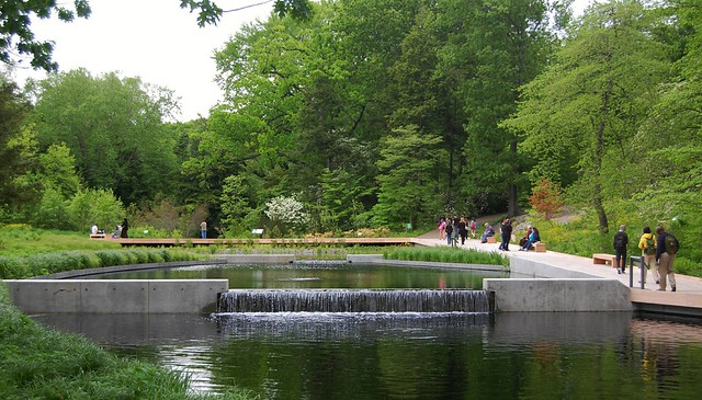The New Native Plant Garden At The New York Botanical Garden Flickr Photo Sharing