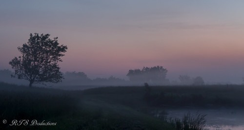 wood longexposure trees sky nature water field leaves june fog clouds sunrise canon landscape outdoors morninglight spring pond overcast 7d orangesky cloudysky buschwildlife canon7d canon1585mmlens