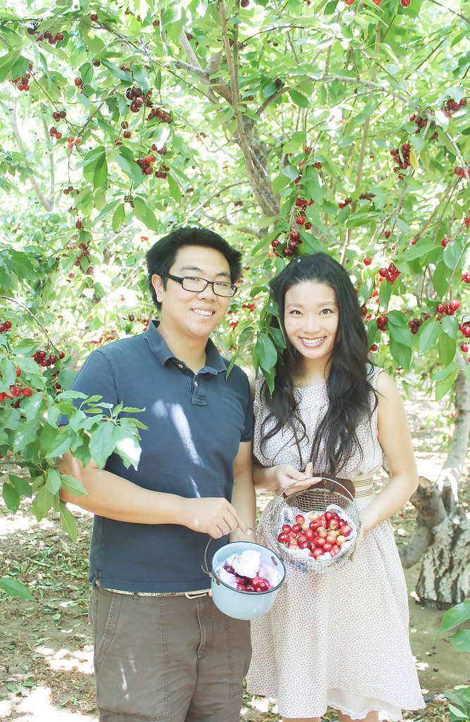 AH's cherry bounty