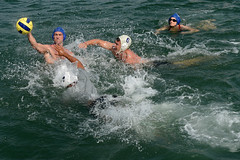 water & ball sports, water polo, swimming, sports, outdoor recreation, wind wave, wave, water sport,