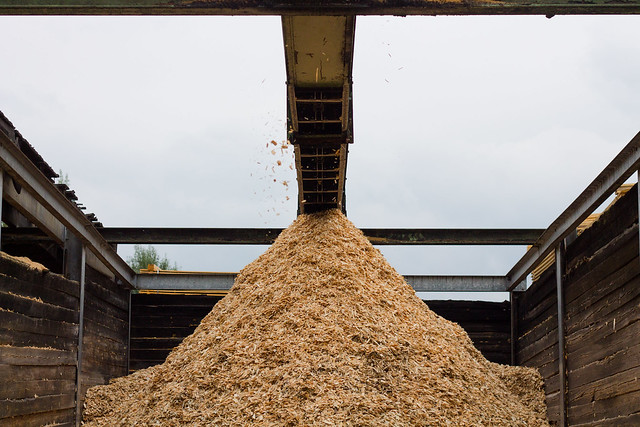 Holz in seiner groben Art