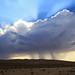 Desert Storm by jdmofo86