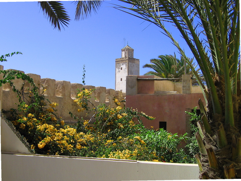 Riad Des Palmiers Essaouira