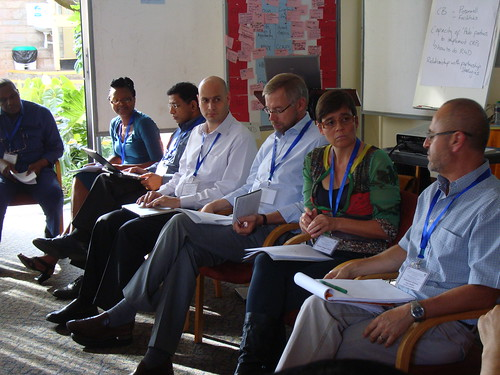 CGIAR CapDev Workshop: Panel
