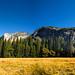Yosemite Valley Pano