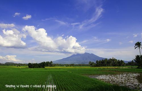 Indonesia - West Sumatra - Payakumbuh - Near Lembah Harau