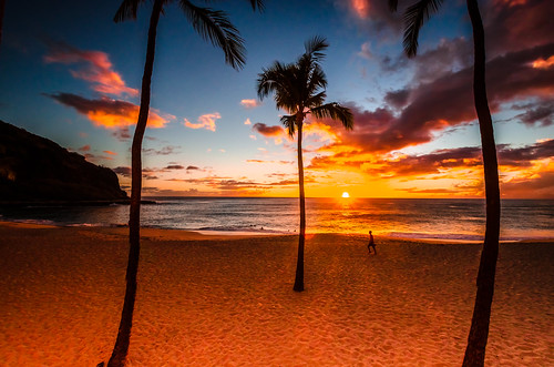 sunset color nature weather horizontal night landscape hawaii pattern display screensaver background pacificocean cloudscape coconuttrees makahabeach pwpartlycloudy goldenhrs
