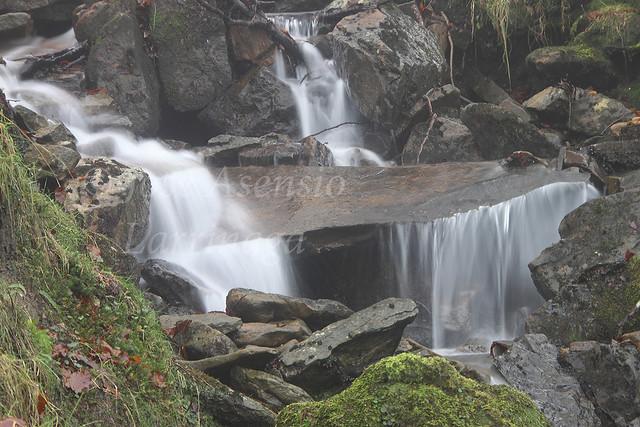 Parque Natural de Gorbeia/Gorbea #DePaseoConLarri #Photography 2139