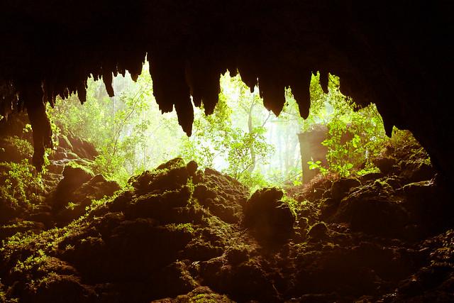 Las Cavernas del Rio Camuy