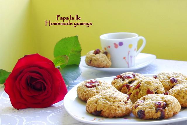 Biscuiti de ovaz cu merisoare (1)
