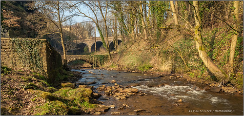 The Torrs . New Mills, March 2014.