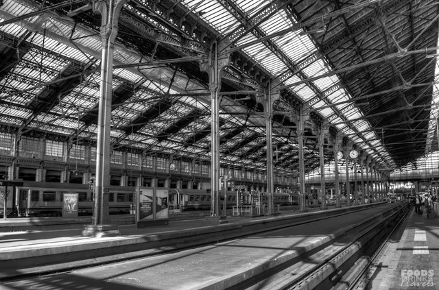 Gare de Lyon Paris Black and white