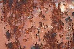 84 Rusty Color Metal texture - 82 # texturepalace