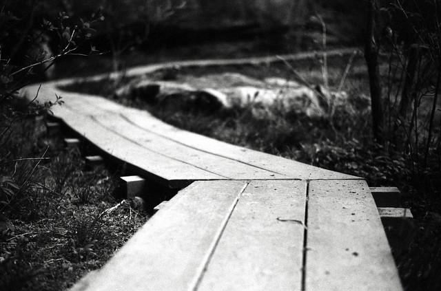 Walk the Planks
