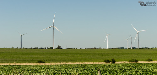 travel parque ecology windmill de landscape uruguay countryside wind farm country paisaje viento molino viajes campo colonia molinos granja ecologia campiña eolic parqueeolico eolico energyefficient tarariras juanlacaze flickrtravelaward