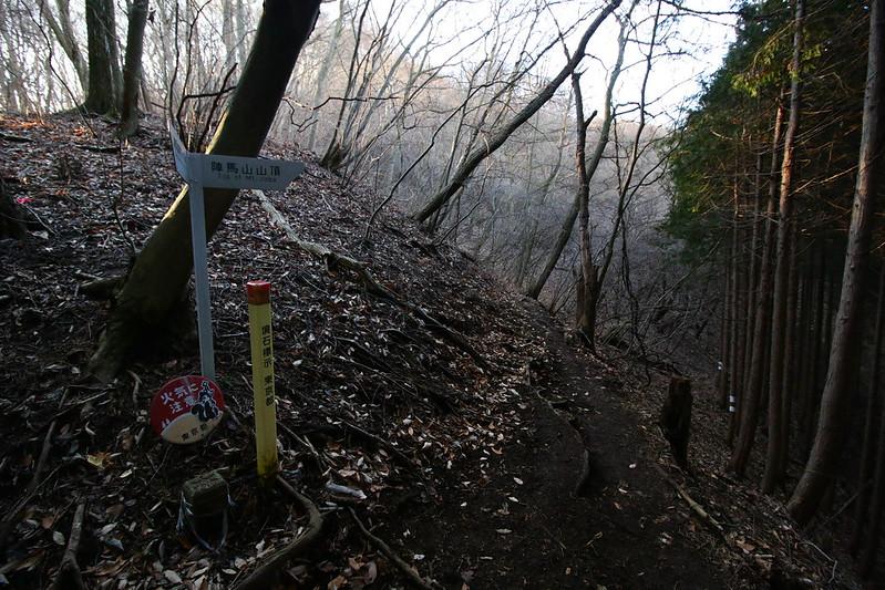 20141230-陣馬山-0048.jpg