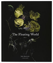 Flaoting-world-cover