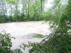 Trostberg-Hochwasser Alz-Juni 2013- bei Degussa