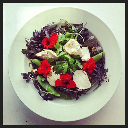 Chicken breast, snap peas, coriander, soya sauce, flowers, wild rocket (arugula), #salad #healthyfood #healthyeating #saladporn #saladpride by Salad Pride