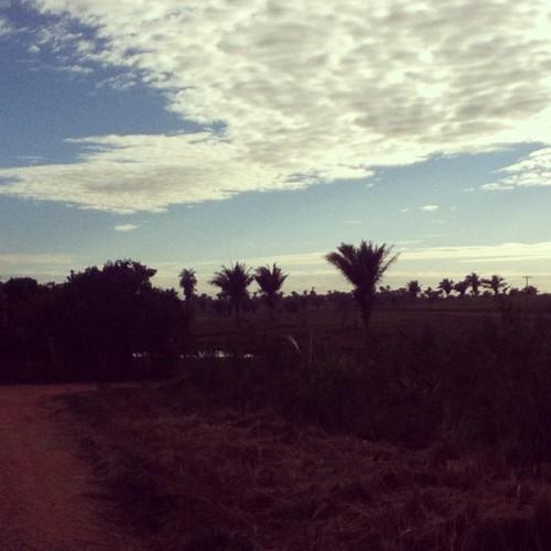 #bomdia  #fotovivida #fff #alive #letsgo