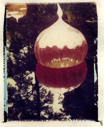 Chihuly's Walla Wallas (Polaroid transfer) by Hilary (curioush)