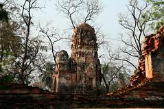 走過荒蕪與孤寂 ~Ayutthaya 大城,Wat Phra Mahathat~