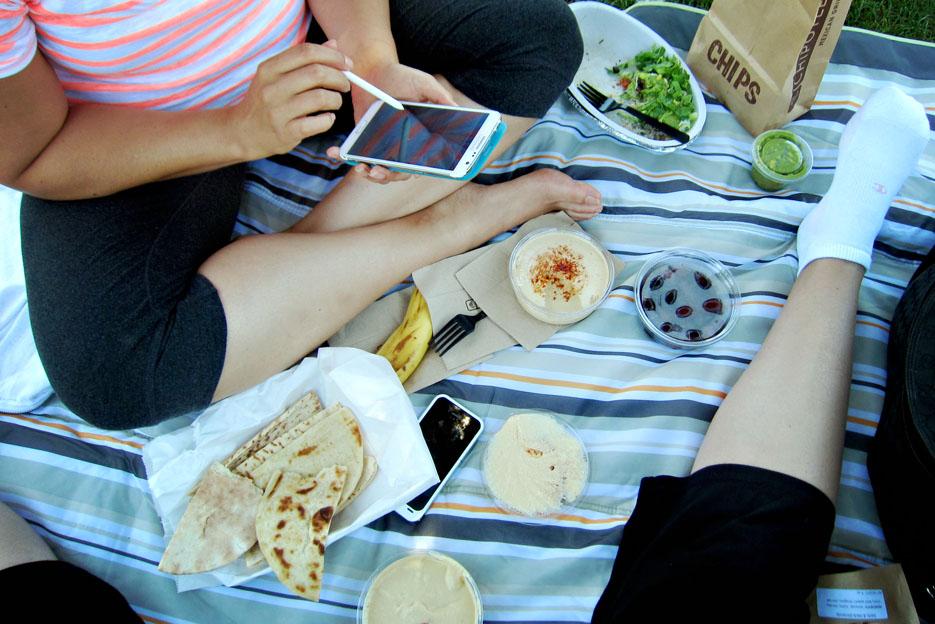 071713_picnic03