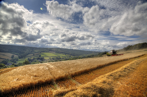 summer landscape countryside farming devon crops agriculture dust hdr day227 farmmachinery ashcombe combineharvester 3xp 227365 fieldofoats claaslexioncombine