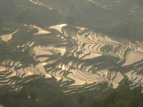 Yunnan13-Yuanyang 24-Bada (30)