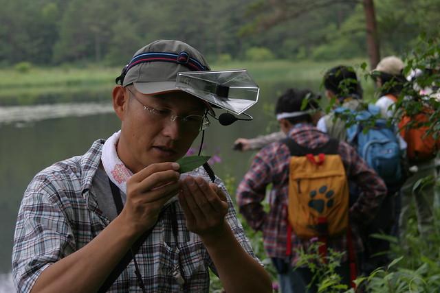 昆虫を見る目がとても優しい岩見先生.同じ道を歩いても見つけ出すのがとても素早かった.
