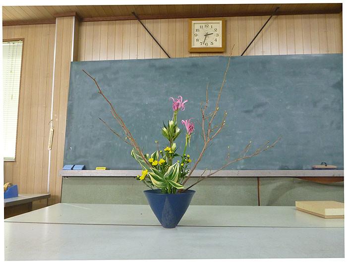 【盛花】土佐水木、エリネ、ナルコラン【2013_09_21】