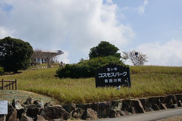 鷲ヶ峰コスモスパーク
