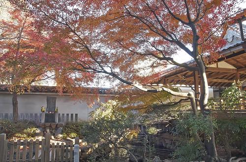 【写真】2013 紅葉 : 妙顕寺/2020-11-01/IMGP4147