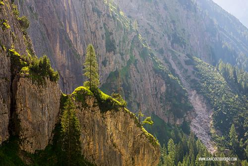 Dolomites - Le Pale di San Martino 28