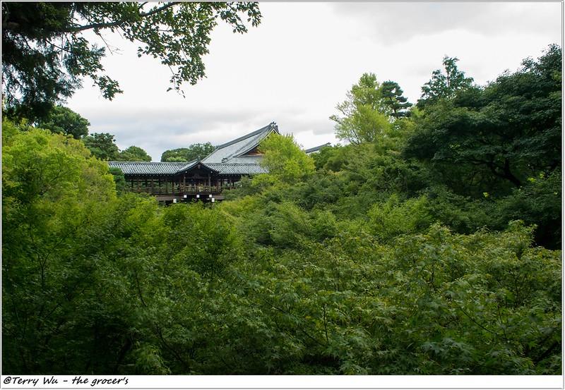 DAY 3 東福寺  (7)