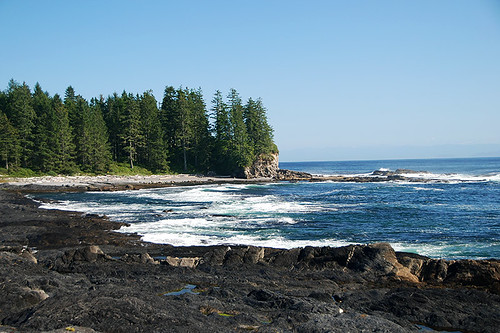 Botanical Beach, Juan de Fuca Provincial Park, Port Renfrew, British Columbia, Canada