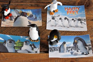 Happy Feet Penguin Species