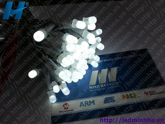LED Phi5 Liền Dây Màu Trắng