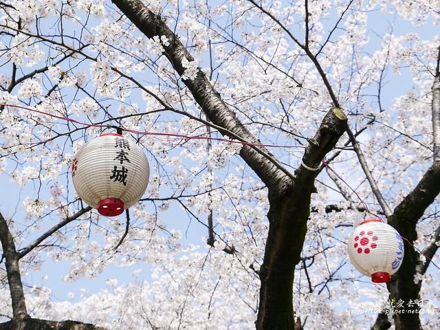 20140327山陽D2熊本-1120955