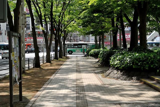 tiba_japan_144_22