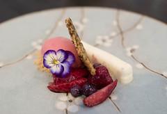 Yoghurt pannacotta and berries