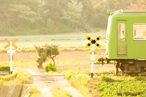 railroad green japan train canon countryside crossing railway 千葉 鉄道 ローカル線 localline 銚子電鉄 踏み切り