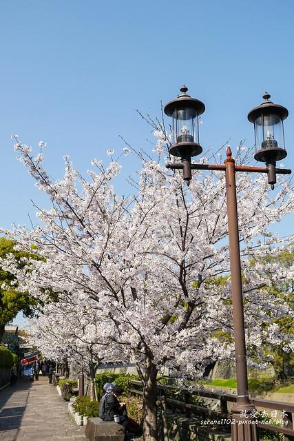 20140327山陽D2熊本-1120766