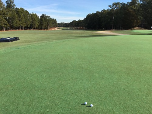 Pinehurst No. 2 - Putting Green