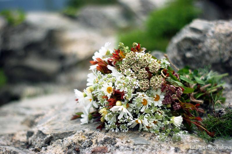 Букетик из весенних цветов