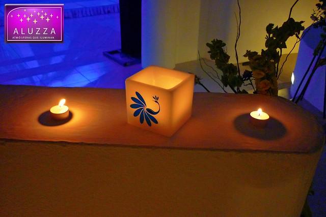pantalla de cera tematica de pavo real para decoracion de xv años aluzza