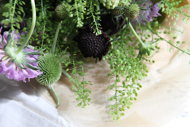 peppergrass, scabiosa, etc.